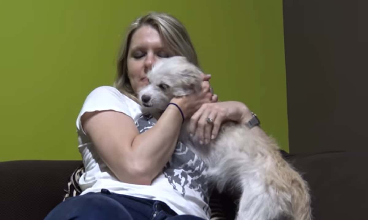 Puppy Living In The Los Angeles River, Found Her Home